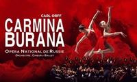"""1 place pour lopéra """"Carmina Burana"""" à Gand, Liège ou Bruxelles dès 23,50 €"""
