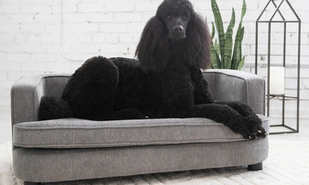 Up To 23 Off On La Z Boy Bartlett Dog Sofa Bed Groupon Goods