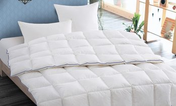 Couette plumes 700gr/m²