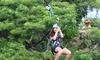Zipline Tour at Coral Crater Adventure Park