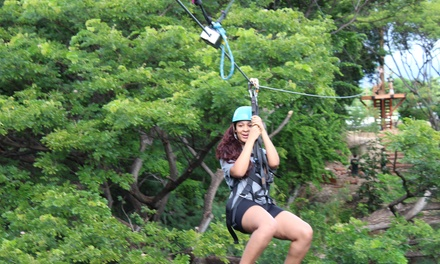 $120 for Two-Hour Signature Coral Crater Zipline Tour for One at Coral Crater Adventure Park