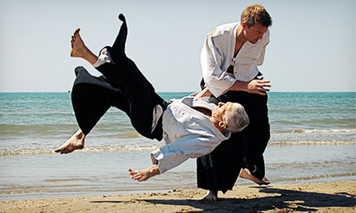 Aikido Bootcamp - Houston: One or Two Four-Week Boot-Camp Sessions at Aikido Bootcamp (51% Off)