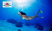 4-Hour Carnac Island Snorkelling Trip with BBQ for One ($55), Two ($99) or Six ($297), Heron Charters (Up to $900 Value)