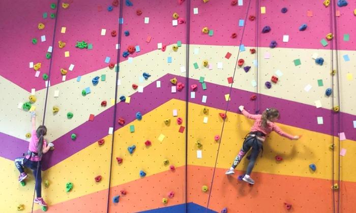 The Dublin Climbing Centre - Tallaght: Children's Taster Climbing Session or Climbing Party Package at The Dublin Climbing Centre (Up to 60% Off)