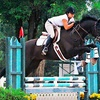 Five 30-minute private horseback riding lessons