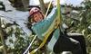 Ace Adventure Resort - Minden, WV: Zipline Canopy Tour for One or Two at Ace Adventure Resort (Up to 43%  Off)