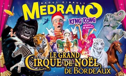 1 place en tribune d'honneur pour l'une des représentations du Cirque Medrano, le grand cirque de Noël à 10 € Bordeaux