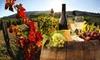 Up to 40% Off Wine Tasting at Duck Walk Vineyard