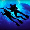 Half Off Scuba or Snorkelling Course