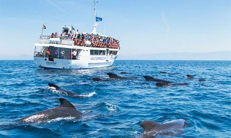 Excursión en barco con avistamiento de cetáceos para 1 o 2 personas desde 15,95 €en Turmares Tarifa Oferta en Groupon