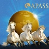 2 Tickets Pferdeshow APASSIONATA
