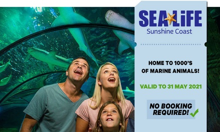 SEA LIFE Sunshine Coast: Child  ($23) or Adult ($34) Entry (Up to $42 Value) - Valid till 31st May 2021