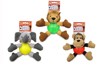 Bow Wow Pet Circus Pals Toy for Dogs (3-Pack)