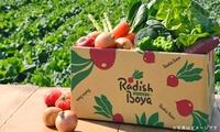 【 49%OFF 】みなさまに愛されて30年。2017年度出荷実績は218万セット以上!有機・低農薬野菜の戸別宅配サービスが登場 ≪ 野...