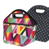 Packit Traveler Lunch Bag