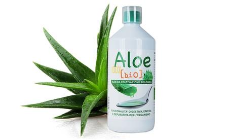 Un litro di succo concetrato Aloe 100% Bio