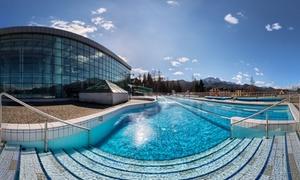 Termalny Aqua Park Zakopane: Termalny Aqua Park Zakopane: bilet open na całodzienne wejście (od 44,99 zł) lub bilet rodzinny na baseny (79,99 zł)