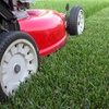29% Off Lawn Mowing Service