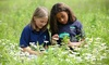 West Michigan Academy of Environmental Science - Walker: Science & Nature Camp at West Michigan Academy of Environmental Science (Up to 52% Off). Five Options Available.