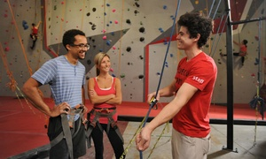 Vertical Ventures: $30 for an Introductory Rock-Climbing Class with a 1-Month membership at Vertical Ventures ($60 Value)