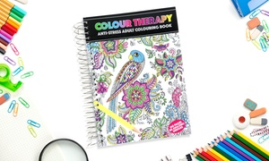 Livre de coloriages de mandalas PMS