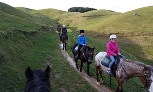 Ohariu Valley Equestrian Centre: 1-Hour Guided Horse Trek for 1 ($39), 2 ($75) or 4 ($145) People with Ohariu Valley Equestrian Centre (Up to $240 Value)