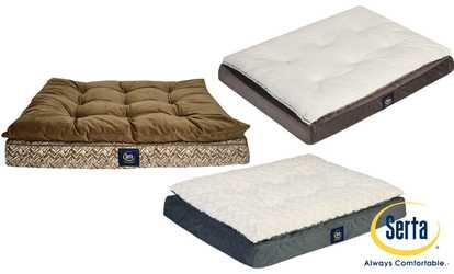 Dog Beds Amp Furniture Deals Amp Coupons Groupon