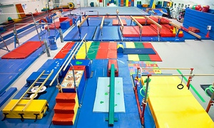 Jersey Shore Gymnastics Academy: Kids Gymnastics Summer Camp at Jersey Shore Gymnastics Academy (Up to 46% Off). Four Options Available.