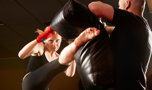 Master Pagano's Red Dragon Martial Arts: 5 or 10 Kickboxing or Karate Classes at Master Pagano's Red Dragon Martial Arts (Up to 73% Off)