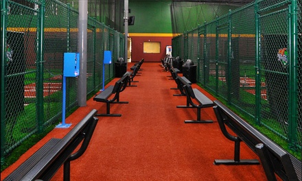Batting Cage Tokens or Private Baseball, Softball, or Soccer Lessons at D-Bat-Perimeter (Up to 48% Off)