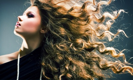 Haircut Package with Optional Color Touchup or Partial or Full Highlights at NY Line of Hair Design (Up to 55% Off)
