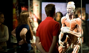 BODY WORLDS Amsterdam: Tickets BODY WORLDS Amsterdam: The Happiness Project, naar keuze met audio guide
