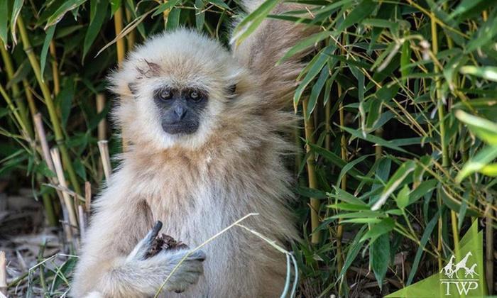 Tanganyika Wildlife Park in - Goddard, KS   Groupon