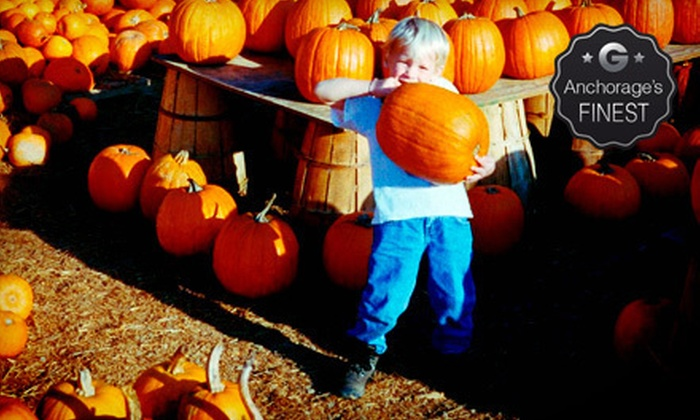 Reindeer Farm - Palmer: $10 for a Fall-Themed Visit for Two to Reindeer Farm (Up to $20 Value)