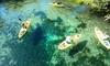 Up to 58% Off Kayak Rental at River Adventure Tours