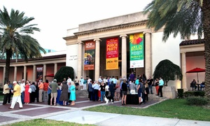 Museum of Fine Arts: Twelve-month Individual or Family Membership to the Museum of Fine Arts (Up to 35% Off)