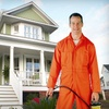 71% Off From Horizons Professional Pest Control