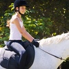 Up to 56% Off Riding Lessons in Abita Springs