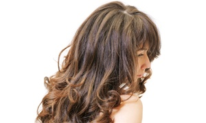 Melinda Douglas at Hairology: Up to 51% Off Hair Design & Style at Melinda Douglas at Hairology