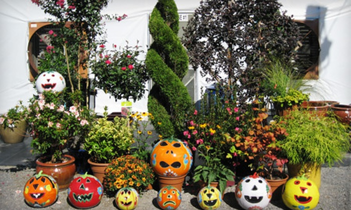 Reese's Plants - Blythewood: $15 for $30 Worth of Indoor and Outdoor Plants at Reese's Plants in Blythewood