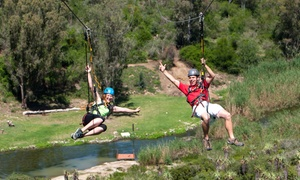 Adrenalin Addo: Zipline Tour from R259 for Two at Adrenalin Addo (Up to 65% Off)