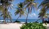 CLOSED - Hibiscus Beach Resort - CLOSED - St Croix: Three-, Five-, or Seven-Night Stay with Dining Credit at Hibiscus Beach Resort in St. Croix, U.S. Virgin Islands