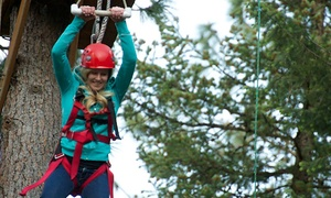 Adventure Dynamics Inc.: Aerial Adventure with Zipline, Giant Swing, Quick Jump and more at Adventure Dynamics Inc. (Up to 58% Off)