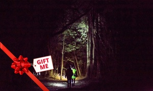 Real Rotorua: Nocturnal Guided Walking Tour for One ($40), Two ($79) or Four People ($155) with Real Rotorua (Up to $260 Value)