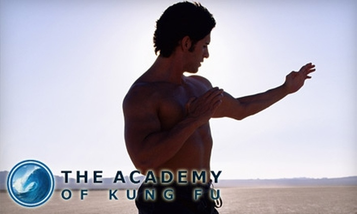 Academy of Kung Fu - Portland: $35 for One Month of Unlimited Adult Classes at the Academy of Kung Fu