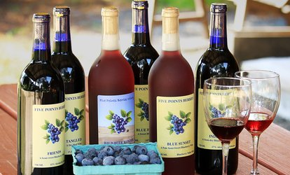 image for Deluxe Wine Tasting for Two or Four at Five Points Berries Winery (Up to 47% Off)