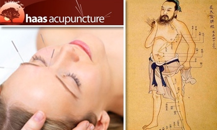 Haas Acupuncture - Kendall: $39 for an Acupuncture Consultation and One-Hour Session at Haas Acupuncture ($120 Value)