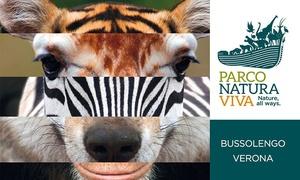 PARCO NATURA VIVA: Parco Natura Viva: 2,3 o 4 ingressi per adulti e bambini al parco faunistico e safari (sconto fino a 51%)