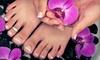 Four Seasons Nail Salon - Clinton: Basic Mani-Pedi or Shellac Manicure and Basic Pedicure at Four Seasons Nail Salon (Up to 55% Off)