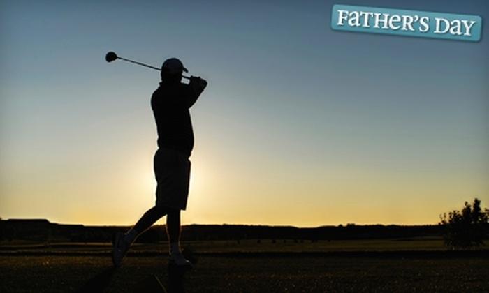 TGM Golf - Pendleton: $39 for Golf Lesson and Website Membership at TGM Golf ($140 value)